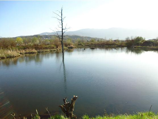 jezero_istocno_sarajevo